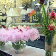 Promo «Master class of Dutch florists»