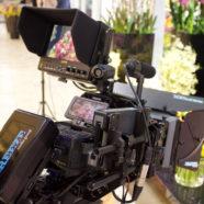 8-е марта в «Театре цветов Марины Петровой» рекламный ролик для телевидения