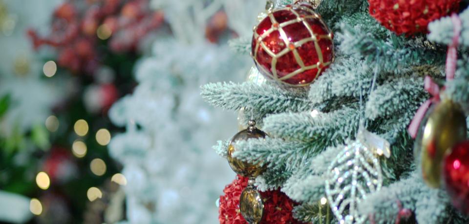 Рекламный ролик «Новый год в Театре цветов Марины Петровой»