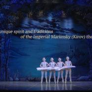 Проморолик «Лебединое озеро» театр «Русский балет» Санкт-Петербург