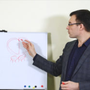 Проведение вебинаров Петербургской школы переговорщиков «ШИП»